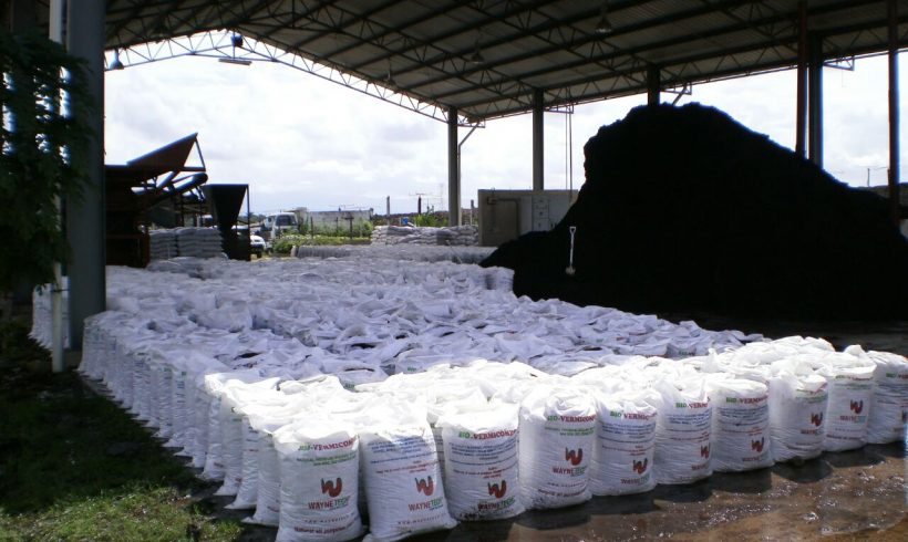 palm-oil-mill-waste-management7
