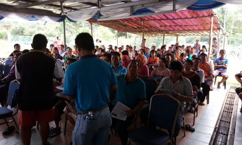 Free Organic Fertilizer Giveaway Kg Tangkarason, Sabah