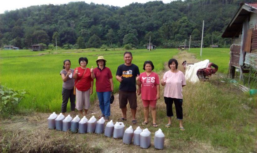Organic Fertilizer Pickup from Papar Distribution Center , Sabah