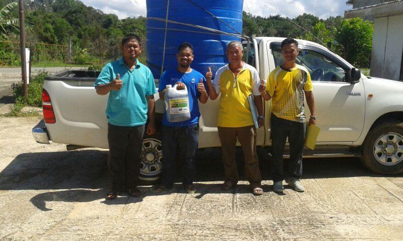 Organic Fertilizer Pickup , Papar Sabah.