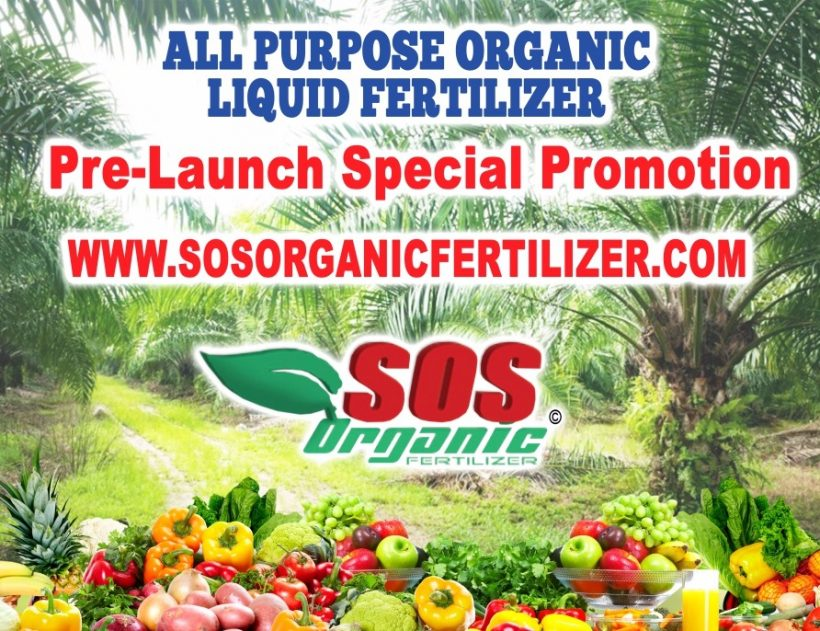 Pre launch special promotion