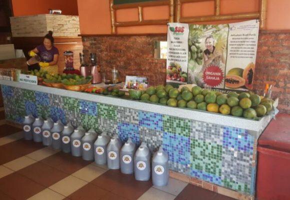 SOS organic liquid fertilizer testimony for papaya